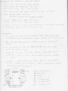 A1_SS_sketch2